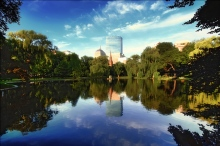 Boston Public Garden in a photo by Eric Hill.