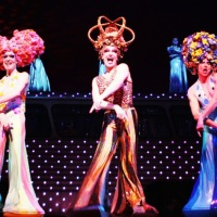 "Return of the Disco Era: ""Priscilla, Queen of the Desert"" on Broadway"