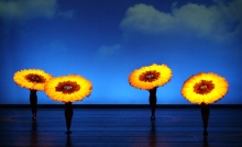 MOMIX brings Botanica to the Joyce.