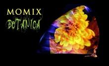 MOMIX Botanica