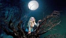 """Renée Fleming in the title role of Dvořák's """"Rusalka."""" Photo: Ken Howard/Metropolitan Opera"""