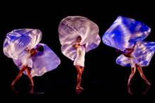 A scene from MOMIX ReMix, which the company brings to SPAC on July 22.