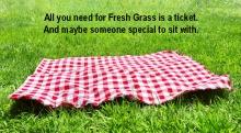 Fresh Grass at Mass MoCA