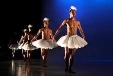 The men are as swan-like as the women in Dada Masilo's gender bending Swan Lake.
