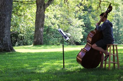 Nature and classical music, the perfect combination.