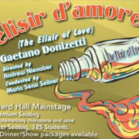 "REVIEW: ""L'elisir d'amore"" at Hubbard Hall"