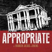 """Open Auditions for """"Appropriate"""" at Albany Civic Theater"""