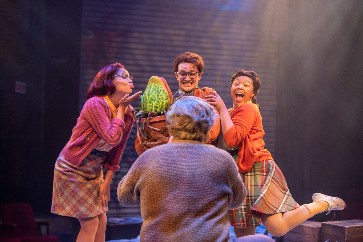 """REVIEW: """"Little Shop of Horrors"""" at the Mac-Haydn Theatre"""