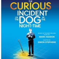 "Home Made Theater Announces Auditions for ""The Curious Incident of The Dog in the Night-Time"""